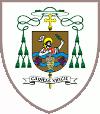 srijemska biskupija